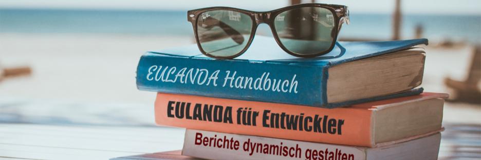 Etwas Handbuch lesen, so in den letzten Urlaubstagen?